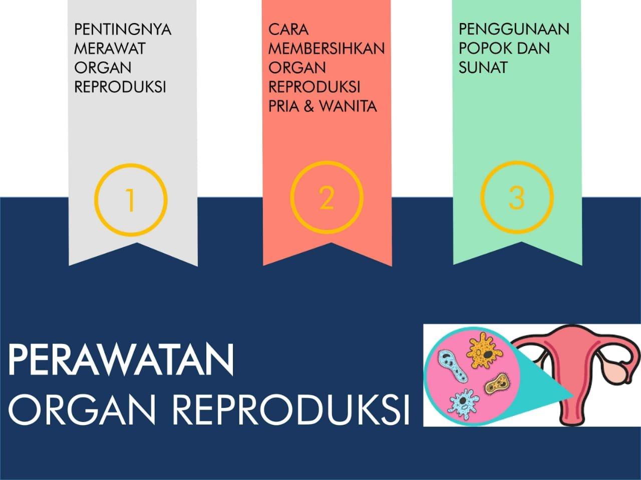 Fitrah Seksualitas Dan Reproduksi Sehat Rizfa Notes